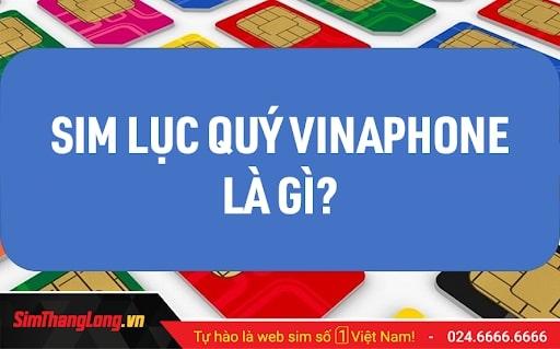 Kho SIM Lục Quý Vinaphone Sim Thăng Long giá tốt nhất thị trường!